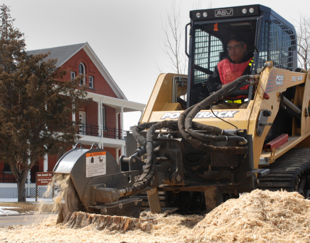 this image shows stump removal in Fullerton
