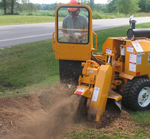 A picture of stump grinding in Fullerton, CA.